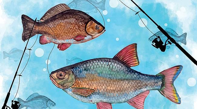 Olta Balıkçılığı Turnuvası Başlıyor