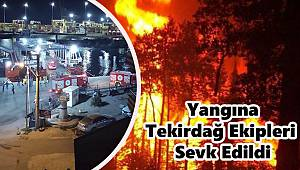 Marmara Adası'nda Yangın, Tekirdağ'dan Ekipler Sevk Edildi