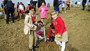 Öğretmenler Ormanı El Birliği Büyüyor