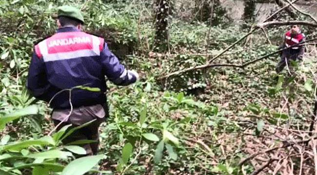 105 Yaşında Kaybolan Adam Ormanlık Alanda Bulundu