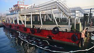 Balıkçı Teknesi Yolcu Feribotuna Çarptı