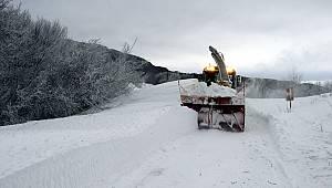 Kar Nedeniyle Kapanan Yollar Ulaşıma Açıldı