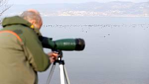 Nesli Tehlike Altındaki Kuşların Uğrak Mekanı Sapanca Gölü