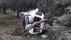 İznik'te Kontrolden Çıkan Hafif Ticari Araç, Ağaca Çarptı: 1 Yaralı