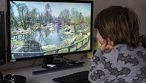 Ziyarete Kapatılan Bursa Hayvanat Bahçesi İnternetten Gezilebilecek