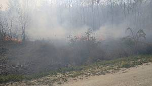 Ormanlık Alanda Çıkan Yangın Kontrol Altına Alındı