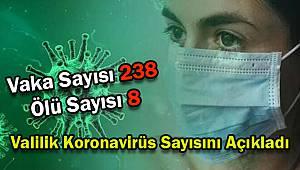 Valilik Koronavirüs Sayısını Açıkladı, 238 Vaka 8 Ölüm