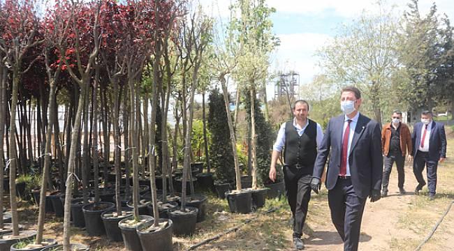 Bandırma Belediyesi Hurda Demirlerin Geri Dönüşümüyle Çiçek Serası Kurdu