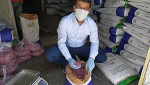 Çiftçilere Hibe Tohumlar Teslim Edilmeye Başlandı