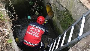 Yağmur Suyu Kanalına Düşen Kaz ve Yavruları İtfaiye Ekiplerince Kurtarıldı