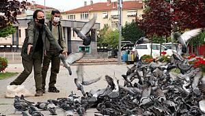 Yalova'da Sokak Hayvanları Bayramda Da Unutulmadı
