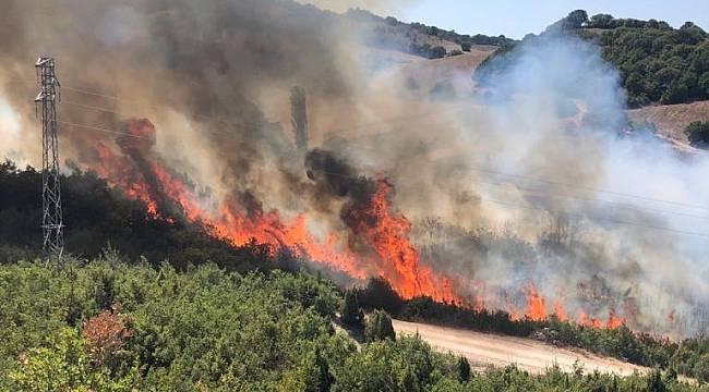 Balıkesir'de Makilik Alanda Çıkan Yangına Müdahale Ediliyor
