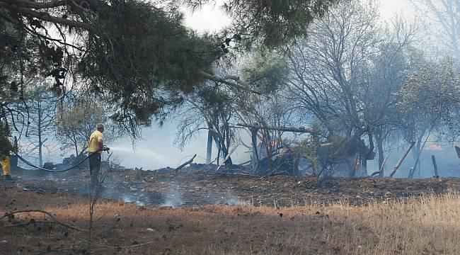 Çanakkale'deki Yangında 50 Dönüm Tarım Arazisi Zarar Gördü