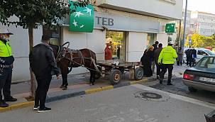 At Arabasını Kaldırıma Bırakan Kişiye Para Cezası Uygulandı