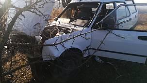 Kontrolden Çıkan Otomobil Ağaca Çarptı, 1 Yaralı