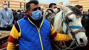 Keşan'da Atlar Artık Yük Taşımayacak