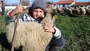 Balıkesirli Küçük Çoban Şevki, Hayatın Sırrını Çözmüş!