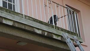 Binada Mahsur Kalan Köpeğin Yardımına İtfaiye Ekipleri Yetişti