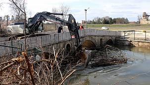 Fatih Köprüsü Ağaç Dalları ve Kütüklerden Temizlendi