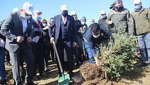 Recep Tayyip Erdoğan Hatıra Ormanı'na Fidan Dikildi