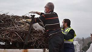 Balıkesir'in Sındırgı İlçesinde Leylek Yuvalarında Bahar Temizliği Yapıldı