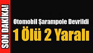 Otomobil Şarampole Devrildi, 1 Ölü 2 Yaralı