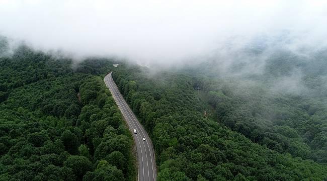 Istranca Ormanlarını Saran Sisin Büyüleyici Güzelliği