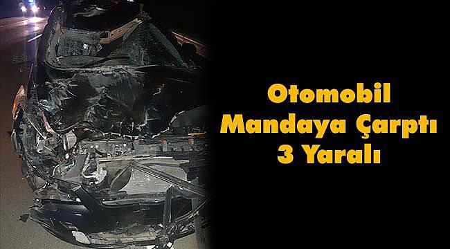 Otomobil Mandaya Çarptı, 3 Yaralı