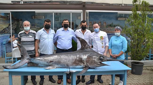 Saros Körfezi'nde 3 Metrelik Kılıç Balığı Yakalandı