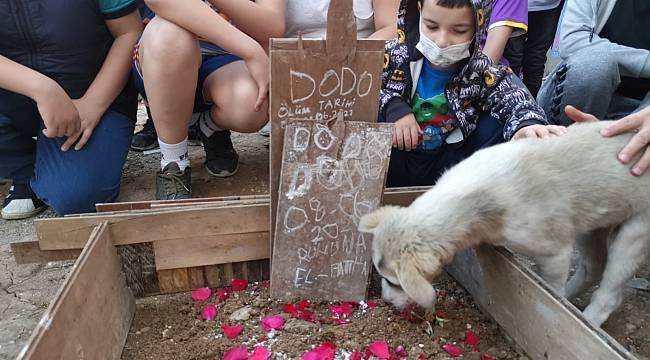 Yavru Köpeği Ezerek Öldüren Sürücüye Para Cezası Verildi