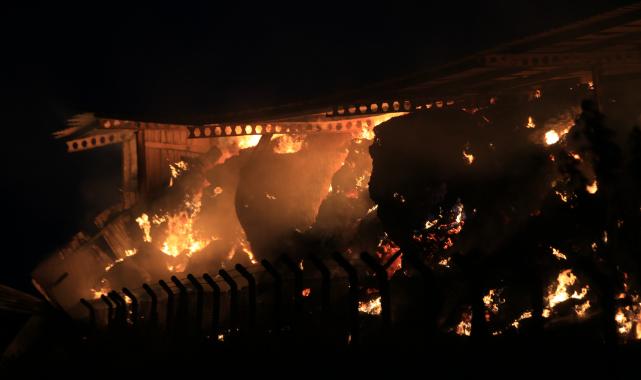 Hayvan Çiftliğinde Çıkan Yangına Müdahale Ediliyor