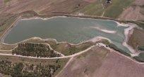 Sulama Göletinde Binlerce Ölü Balık Kıyıya Vurdu